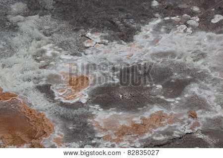 Hot Water Bacteria Background