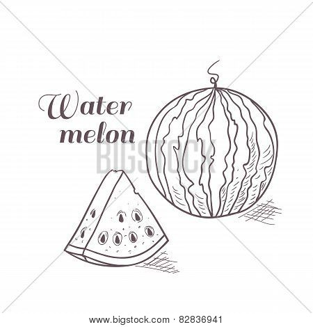 Vector Illustration Of Engraved Watermelon