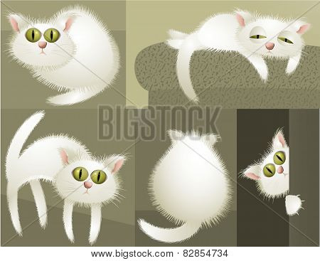 White cat character
