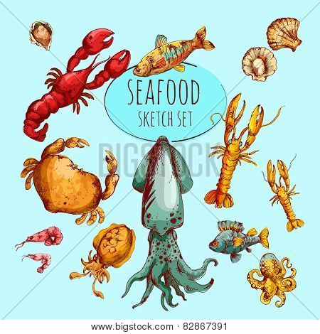 Seafood Sketch Colored