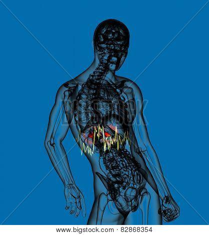 3D Render Medical Illustration Of The  Adrenal  Pain