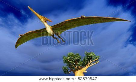 Flying pterodactyl over the sky