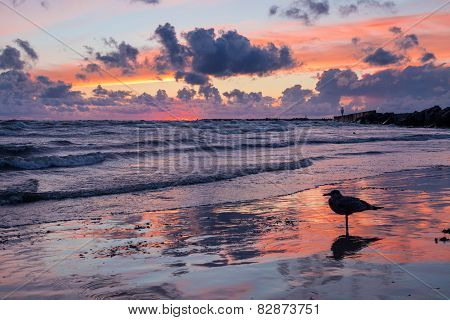 Outstanding Seascape Sunset