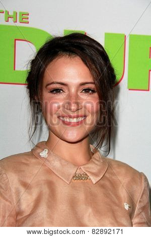LOS ANGELES - FEB 12:  Italia Ricci at the