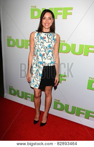 LOS ANGELES - FEB 12:  Aubrey Plaza at the