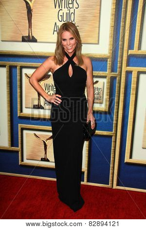 LOS ANGELES - FEB 14:  Cheryl Hines at the 2015 Writers Guild Awards at a Century Plaza Hotel on February 14, 2015 in Century City, CA