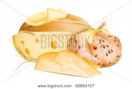 Baguette and kaiser roll with butter and  cheese. Vector illustration.