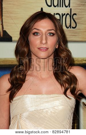 LOS ANGELES - FEB 14:  Chelsea Peretti at the 2015 Writers Guild Awards at a Century Plaza Hotel on February 14, 2015 in Century City, CA