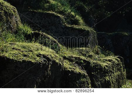Etruscan Tuff with Moss