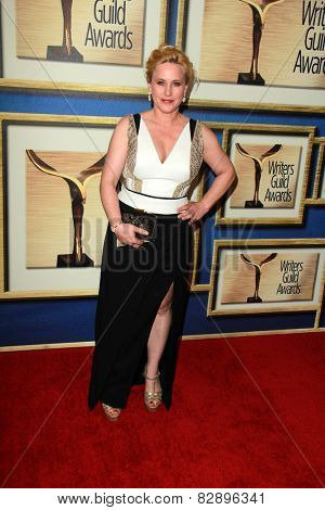 LOS ANGELES - FEB 14:  Patricia Arquette at the 2015 Writers Guild Awards at a Century Plaza Hotel on February 14, 2015 in Century City, CA