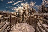 stock photo of frozen  - A view looking across a frozen wooden bridge with snow packed foot prints with the sun shining through frozen trees on the other end - JPG