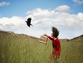 picture of grass bird  - a girl walking in a wheat field on a warm summer day with a black bird - JPG