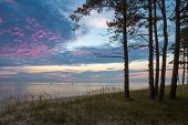 stock photo of jet-ski  - Beautiful seascape with pine trees in foreground and two jet skis riding on calm the Baltic sea right after sunset - JPG