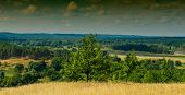 foto of steppes  - forest and steppe landscape blue sky with clouds panorama - JPG