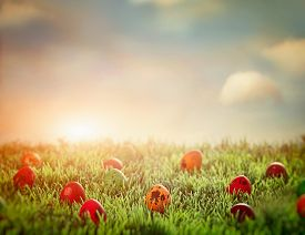 picture of floral design  - Easter eggs in spring grass - JPG