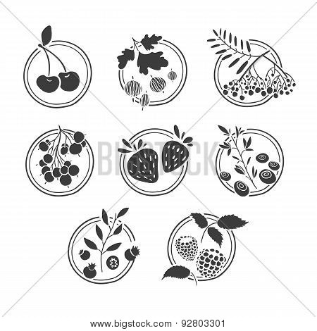 Set of monochrome logos, signs, badges, labels with berries and herbs. Template design. Cherries, bl