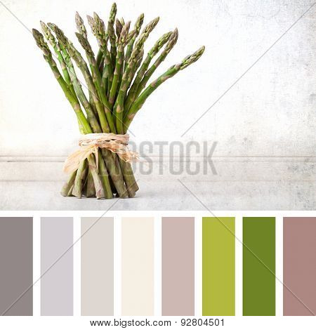 A hand tied bunch of fresh asparagus, vintage effect with space for your text. In a colour palette with complimentary colour swatches.