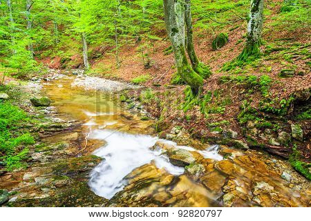 Small River In The Mountain