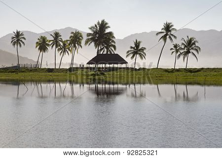 Pacific Ocean Lagoon With Palm Trees