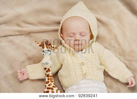 Little Cute Newborn Baby Boy Sleeping With Giraffe