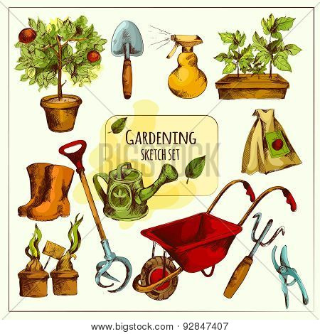 Gardening Sketch Set Colored