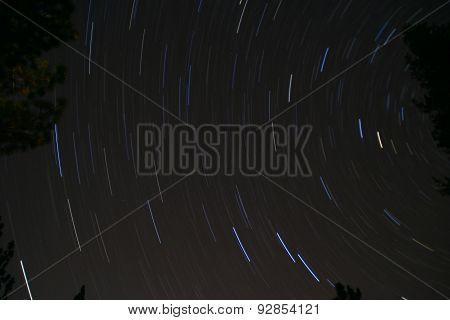 Stars Blur over Sequoia National Park