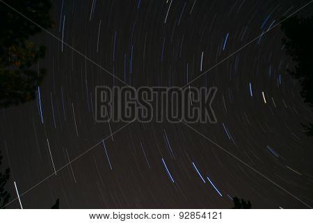 Stars Blur over Sequoia National Park