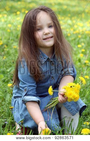 Girl With Long Hair Gathering Dandelions In Spring