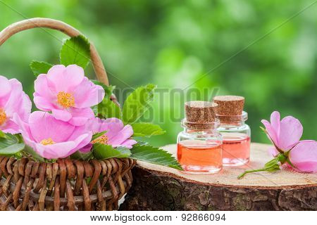 Wicker Basket With Rose Hip Flowers And Bottles Of Essential Oil.