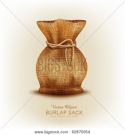Vector object - burlap bag tied  a rope