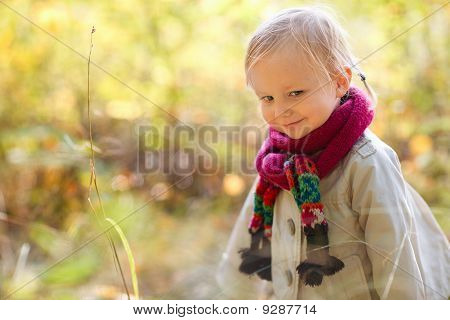 Toddler Girl At Autumn Forest
