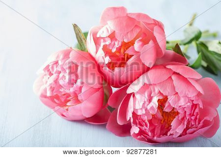 beautiful pink peony flowers bouquet