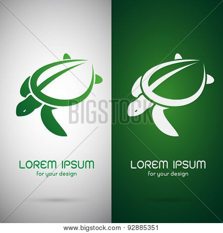 Vector Image Of An Turtle Design On White Background And Green Background, Logo, Symbol