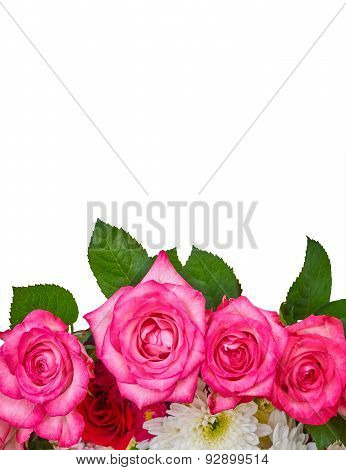pink roses and chrysanthemus on white background