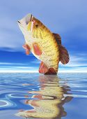 stock photo of lurch  - a fish jumping from the water trying to escape the lure - JPG