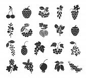 foto of rowan berry  - Berries silhouettes icons set - JPG