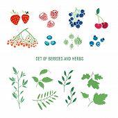 stock photo of strawberry plant  - Set of berries - JPG