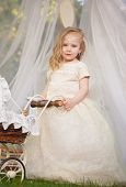 picture of faerie  - Outdoor portrait of cute little girl in princess dress - JPG