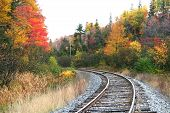 stock photo of train track  - train track during autumn time in michigan - JPG