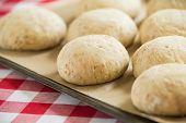 image of bread rolls  - Whole wheat rye bread rolls rising on a baking sheet - JPG