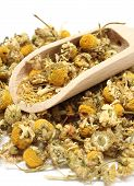 pic of chamomile  - Closeup of dried chamomile heap of dried chamomile on wooden spoon - JPG