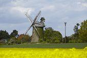 foto of windmills  - The windmill Seelenfeld  - JPG