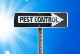 picture of pest control  - Pest Control direction sign with a beautiful day - JPG