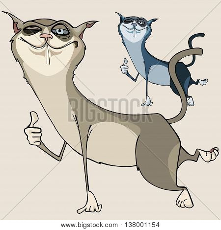 funny cartoon cat encouraging winks and shows gesture