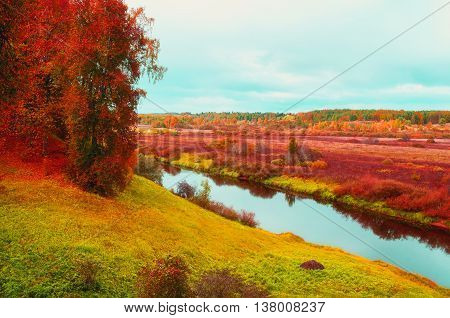 Autumn cloudy landscape view from height of Soroti river and autumn forest trees Russia - autumn natural landscape of autumn forest yellowed nature in autumn cloudy weather. Soft filter applied