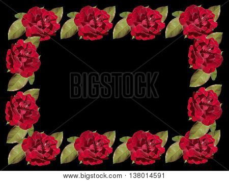 Delicate floral pattern: flowers red rose isolated