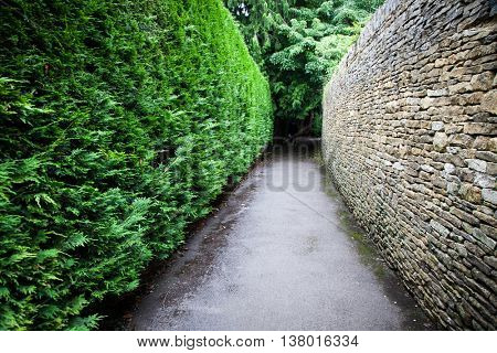 Path with one green wall and one stone wall