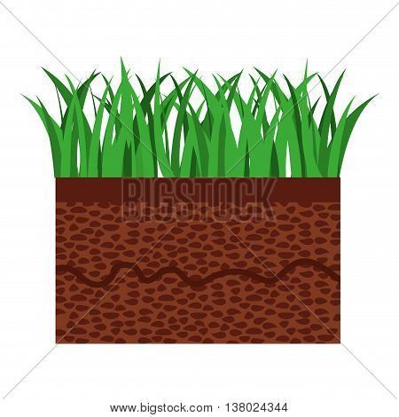 grass and terrain isolated icon design, vector illustration  graphic