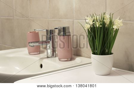 Potted Plant In A Bathroom