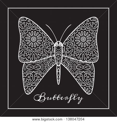 Vector illustration of hand drawn white butterfly on black background